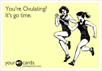 someecards.com - You're ovulating? It's go time.
