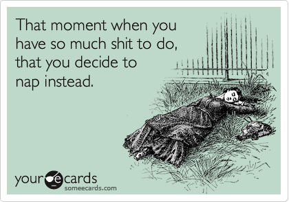 Funny Confession Ecard: That moment when you have so much shit to do, that you decide to nap instead.