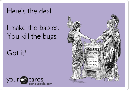 someecards.com - Here's the deal. I make the babies. You kill the bugs. Got it?