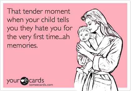 someecards.com - That tender moment when your child tells you they hate you for the very first time...ah memories.