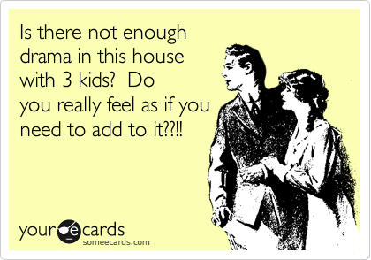 someecards.com - Is there not enough drama in this house with 3 kids? Do you really feel as if you need to add to it??!!