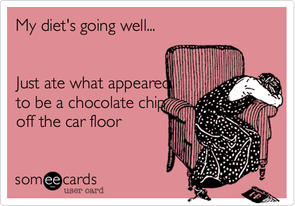 My diet's going well... Just ate what appeared to be a chocolate chip off the car floor
