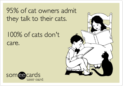 someecards.com - 95% of cat owners admit they talk to their cats. 100% of cats don't care.