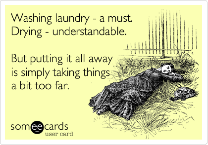 someecards.com - Washing laundry - a must. Drying - understandable. But putting it all away is simply taking things a bit too far.