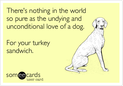 someecards.com - There's nothing in the world so pure as the undying and unconditional love of a dog. For your turkey sandwich.