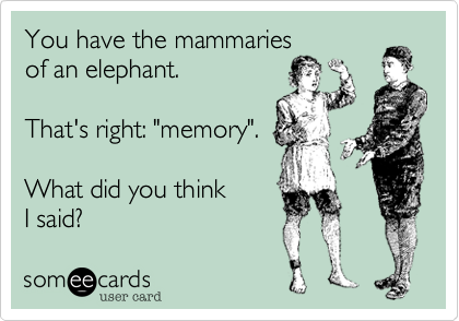 someecards.com - You have the mammaries of an elephant. That's right: