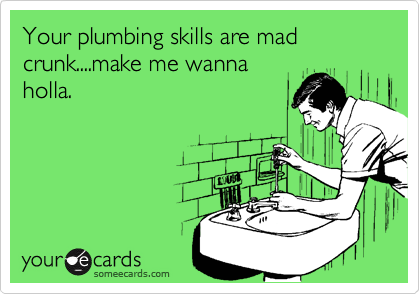 someecards.com - Your plumbing skills are mad crunk....make me wanna holla.