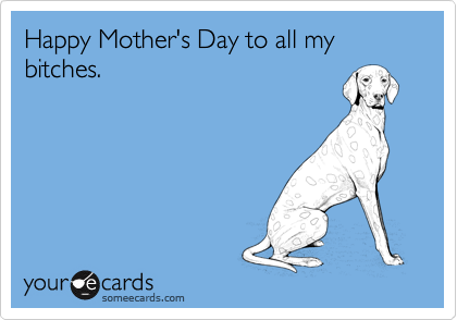 someecards.com - Happy Mother's Day to all my bitches.