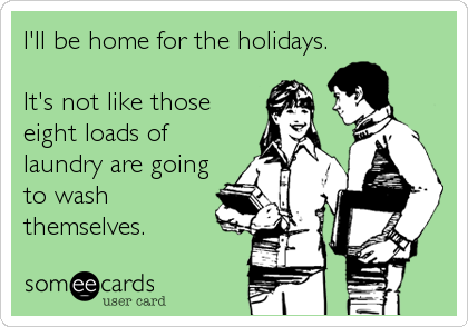 someecards.com - I'll be home for the holidays. It's not like those eight loads of laundry are going to wash themselves.