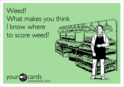 someecards.com - Weed? What makes you think I know where to score weed?
