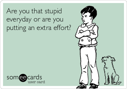 someecards.com - Are you that stupid everyday or are you putting an extra effort?