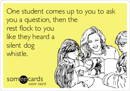 someecards.com - One student comes up to you to ask you a question, then the rest flock to you like they heard a silent dog whistle.