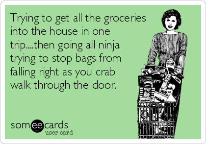 someecards.com - Trying to get all the groceries into the house in one trip....then going all ninja trying to stop bags from falling right as you crab walk through%2