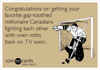 someecards.com - Congratulations on getting your favorite gap-toothed millionaire Canadians fighting each other with oven mitts back on TV soon.