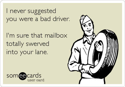 someecards.com - I never suggested you were a bad driver. I'm sure that mailbox totally swerved into your lane.