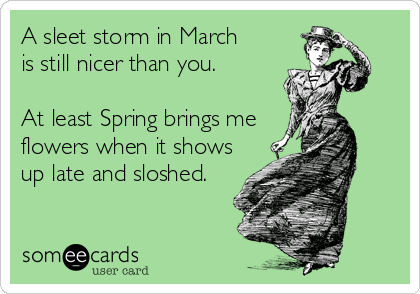 someecards.com - A sleet storm in March is still nicer than you. At least Spring brings me flowers when it shows up late and sloshed.