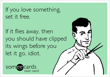 someecards.com - If you love something, set it free. If it flies away, then you should have clipped its wings before you let it go, idiot.
