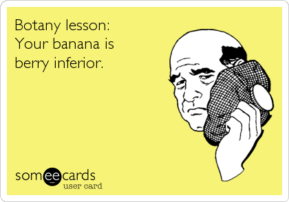 someecards.com - Botany lesson: Your banana is berry inferior.
