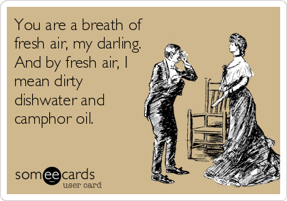 someecards.com - You are a breath of fresh air, my darling. And by fresh air, I mean dirty dishwater and camphor oil.